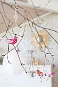 Brightly coloured ornamental birds on branch