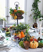 Autumnal arrangement of ornamental squash, cake stand and candles on table