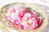 Pink peonies in antique silver dish