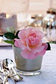 Pink rose in glass container on table