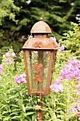 Rusty garden lantern amongst flowering phlox