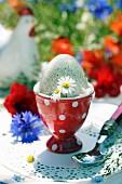 Turkey egg in polka-dot eggcup on table in garden