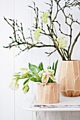 Bare magnolia branch, viburnum flowers and parrot tulips in vases made from mango wood