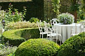 Seating area in garden; vintage-style metal chairs around table with tablecloth surrounded by low, curved hedge