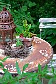 Old, rusty garden table with stencilled floral motifs, Oriental lantern, houseleek in bird's nest and plant in terracotta pot
