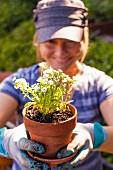 Woman potting plants outdoors