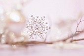 Delicate snowflake decoration on bare twig amongst blurred surroundings