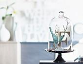 A decorative arrangement under a glass cloche featuring a bird and a letter