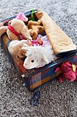 Soft toys and doll in open suitcase on rug