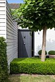 Anthrazitfarbene Schiebetür und holzverschalter Anbau im Vorgarten eines Ferienhausses mit Baum inmitten niedriger Buchshecke