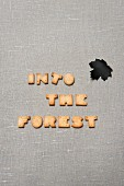 INTO THE FOREST spelled with biscuit letters and maple leaf cut out of black paper on grey linen surface