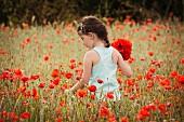 Mädchen pflückt Mohnblumen im Weizenfeld
