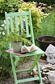 Potted raspberry bush and book on garden chair