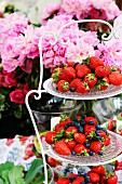 Strawberries & blueberries on cake stand in front of peonies
