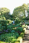 Low hedges edging beds of flowering plants in landscaped garden