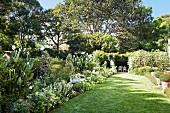 Sonniger Garten mit schmalem Rasenstreifen, zwischen Blumen weisse Sitzbank