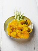 Dandelion flowers in metal dish