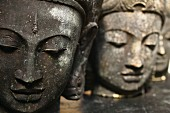 Collection of Buddha heads