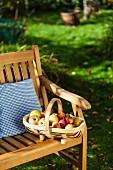 Geerntete Äpfel im Korb auf Gartenbank