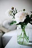 White peonies in glass jar