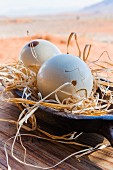 Wolwedans, NamibRand Nature Reserve, Namibia, Africa – decorative ostrich eggs