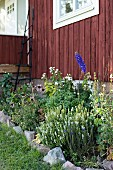 Flowerbed with stone edging outside wooden house painted Falu red