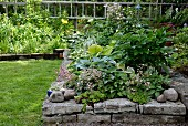 Raised bed with stone surround in summery garden