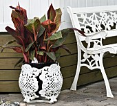 White-painted, cast iron garden bench and planter with foliage plant