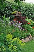 Bird table in flowering garden