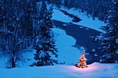 Winterlandschaft mit weihnachtlich leuchtendem Tannenbaum
