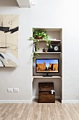 Wooden trunk, flatscreen TV, retro radio and house plant on shelves integrated into white niche