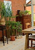 Teilweise sichtbarer Tisch, im Hintergrund Topfpflanzen auf Blumenständer und Holzboden, antiker Holzschrank, vor Ziegel Hauswand eines Anbaues
