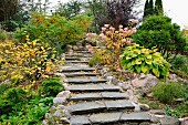 Curved flight of shallow stone steps leading between autumnal garden plants