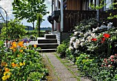 Paved path leading between flowerbeds in summery garden to veranda steps of wooden house