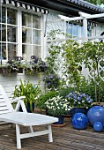 White loungers next to flowering plants in blue pots on wooden deck outside white wooden house