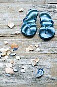 Flip flops and seashells on weathered wooden surface