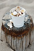 Bucket of seashells on weathered wooden post
