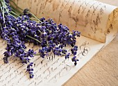 Posy of lavender on antique handwritten page