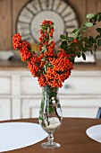 Branches of pyracantha berries in vase