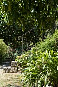 Foot of stone steps with iron handrail in densely planted, Mediterranean garden
