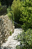 Paved path on slope with stone wall to one side in Mediterranean garden