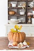Herbstliches Stillleben mit Kürbis, Herbstlaub, Zwiebel und Knoblauch