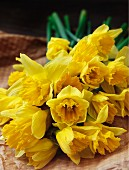 Bunch of fresh daffodils on brown paper