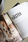 Aufgeschlagenes Buch mit Pferd Abbildung