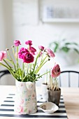 Ranunculus in various shades of pink in painted ceramic jug