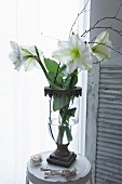 Antique vase of white amaryllis on metal stool