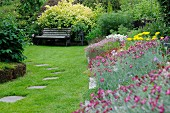 Various flowering plants in summer garden (antennaria in foreground spirea behind bench) and stepping stones in clipped lawn
