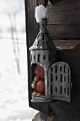 Zinc lantern filled with apples and peanuts for feeding birds