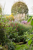 Red bistort (Persicaria amplexicaule) in garden flower bed in late summer