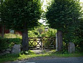 View from street towards rustic wooden garden gate flanked by trees with spherical crowns